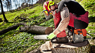 Chainsaw Safety Training (OSHA)