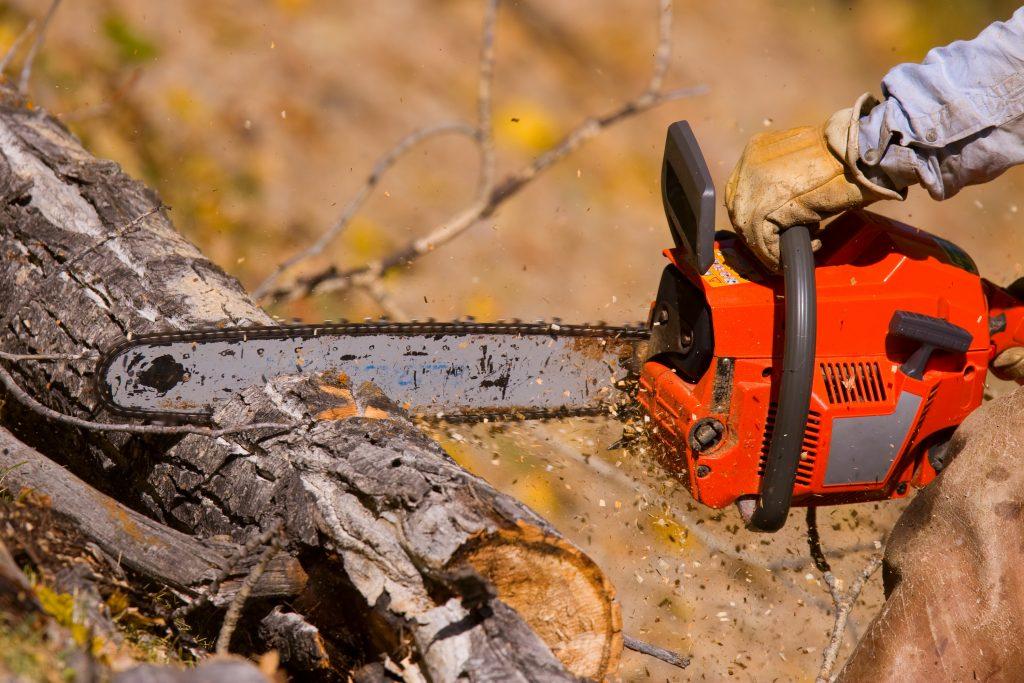 chainsaw training Sudbury